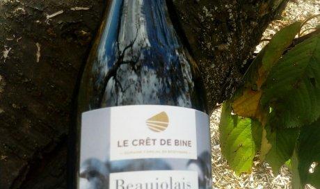 """Le Beaujolais nouveau 2018 arrive! - Domaine du """"Crêt de Bine"""""""