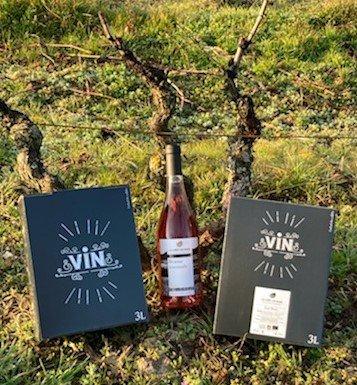 Beaujolais rosé 2020 BIO