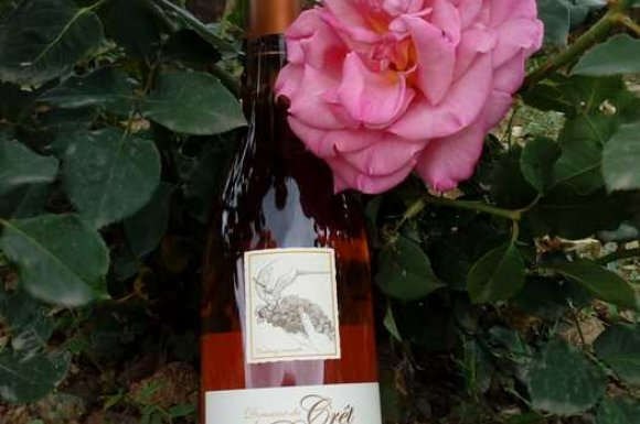 Vin rosé 2019 Cuvée Brume matinale